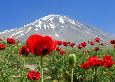 View of Damavand mount in spring